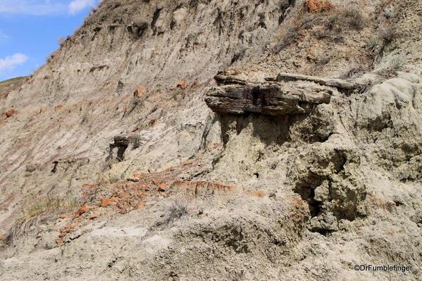 Erosion forming a small Hoodoo, Horseshoe Canyon