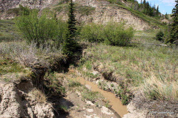 Creek on the floor of Horseshoe Canyon