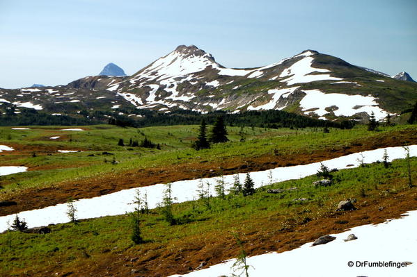 Sunshine Meadows. The snow persists into July.