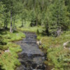 Creek by Garden Path Trail -- Sunshine Meadows