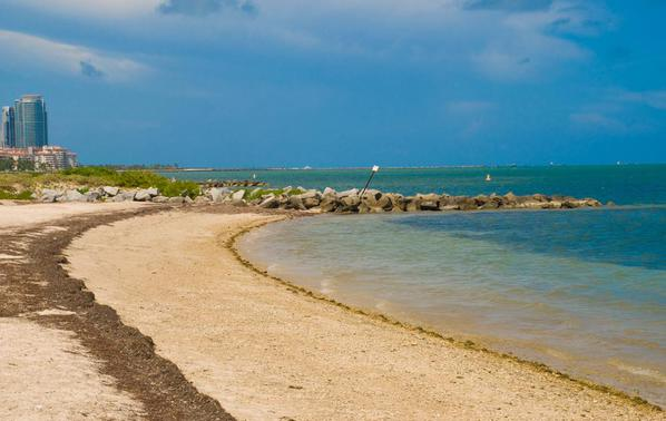 Virginia_Key_Beach_South_Florida_Beaches