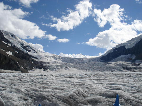 The surface of the Glacier, Columbia Icefield