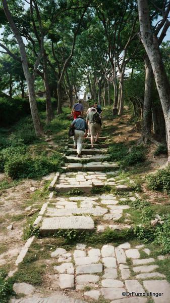 Steps leading to Swayambunath Stupa, Kathmandu