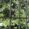 Looking through the window from the Wawona Hotel's dining room