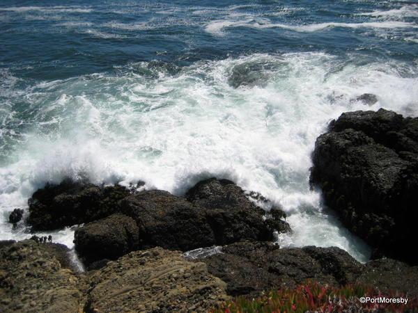 Coast4.4