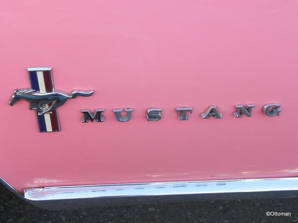 1967 Ford Mustang (4)