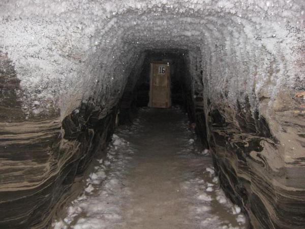 Freezer (4)