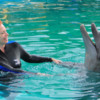 Puerto Vallarta Trainer for a Day.  Dancing with the dolphins