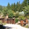 Betty Ford Alpine Garden, Vail