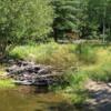 Alpine Pond, Betty Ford Alpine Garden, Vail