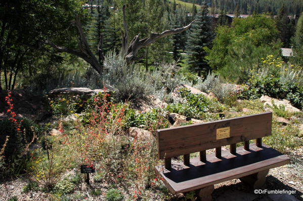 Bench and a view, Betty Ford Alpine Garden, Vail