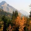Fall colors, Highwood Pass, Kananaskis Country