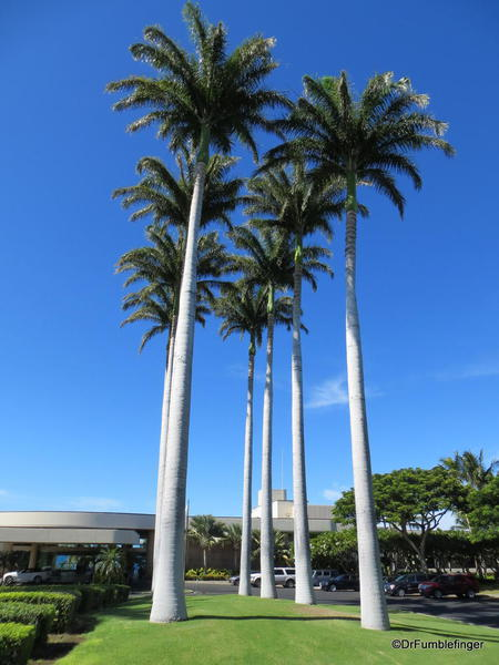 Main entrance of the Hapuna Beach Prince Resort