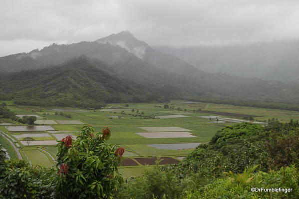 Tropical storm conditions existed with rains drenching the Hanalei Lookout