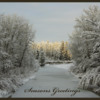 Shannon Terrace 1: Snowy day in Fish Creek Park