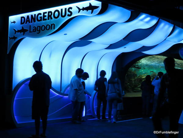 Entering the Dangerous Lagoon's tunnel and moving walkway, Ripley's Aquarium of Canada, Toronto