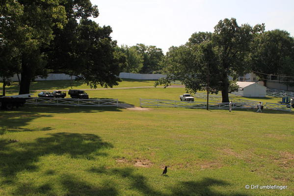 Graceland, Memphis. Elvis' backyard pasture