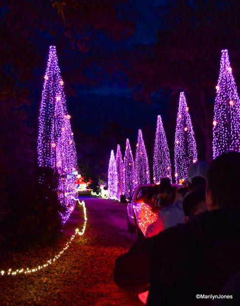 20 Santa's Wonderland