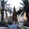 Macy's Christmas Tree: Union Square, San Francisco