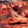Famous Fish Market in Catania