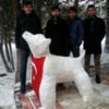 2: Snow Wolf