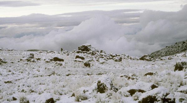 Mt. Kilimanjaro. Fresh snow at Dawn, Sheffield Camp