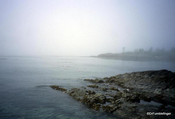Louise Island, Haida Gwaii, Skedans Village, with fog