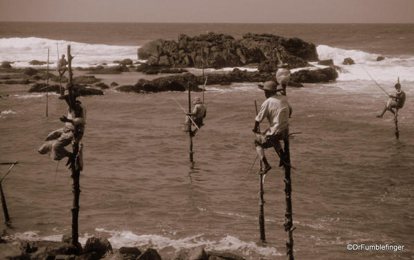 Stilt fisherman, Sri Lanka