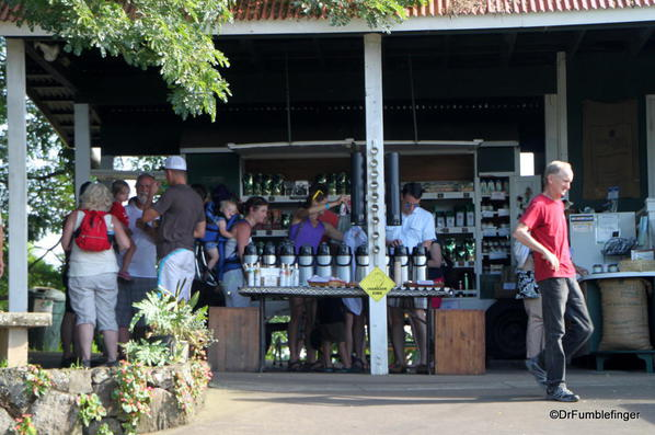 Sampling the coffee, Greenwell Farms Coffee Tours