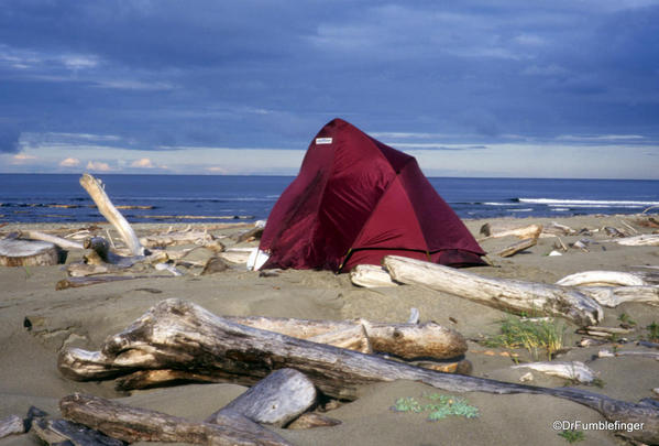 Cape Bell River Camp. East Beach Trail, Haida Gwaii