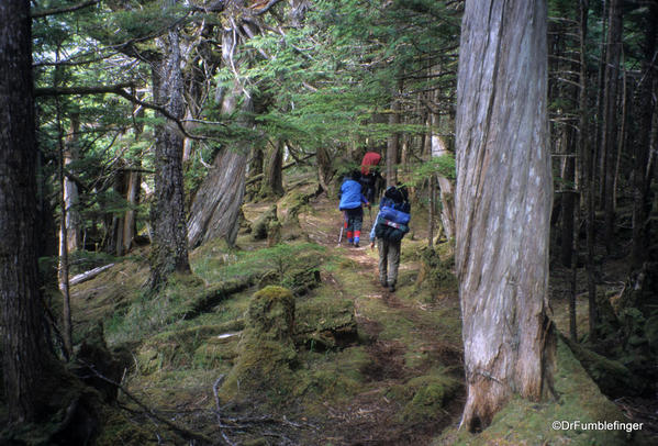 Cape Fife trail. East Beach Trail, Haida Gwaii