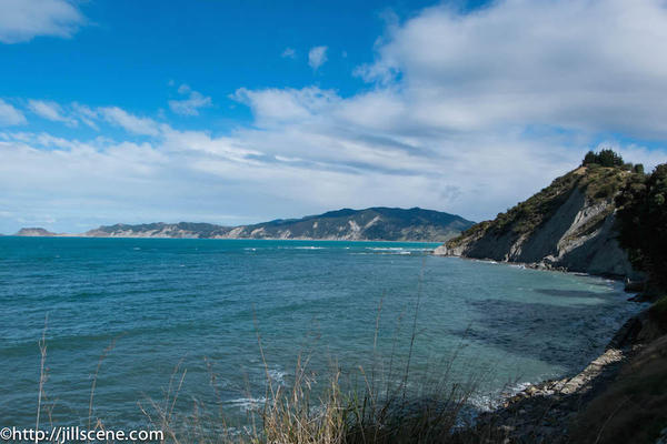 5). Tokomaru Bay - taken from near the old wharf)