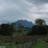 9) Mount Hikurangi - photo taken from State Highway 35, near Ruatoria