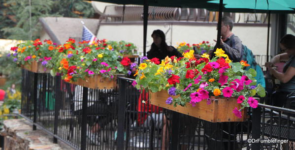Flowers in Vail, Colorado