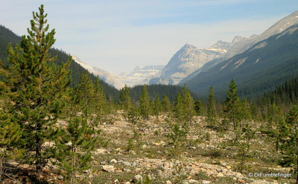 Yoho Valley -- viewed from near trailhead.