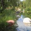 Pond, John Denver Sanctuary, Aspen