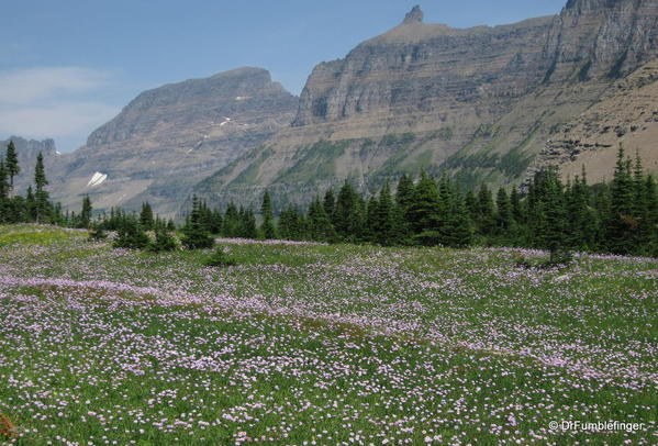 Glacier National Park -- Meadow and Garden Wall