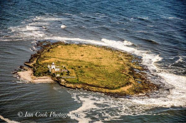 Photo 24-08-2015 08 20 30 Coquet Island Northumberland