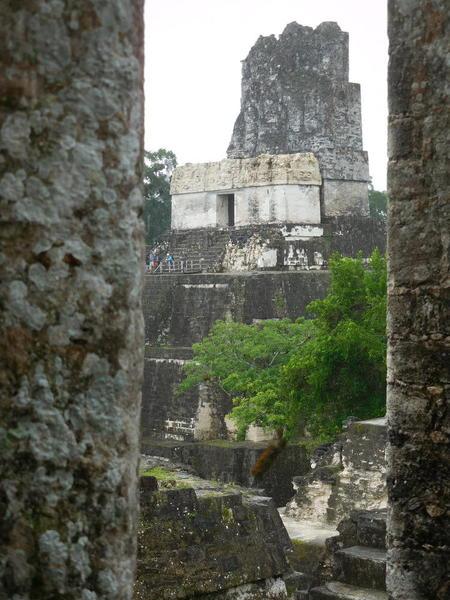 17 2015-11 Guatemala Tikal 105