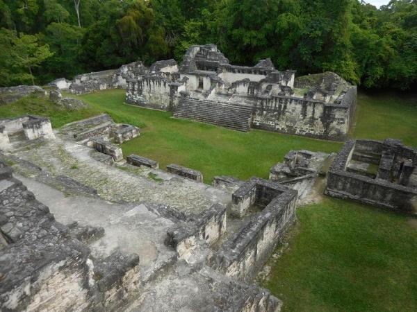 22 2015-11 Guatemala Tikal 053