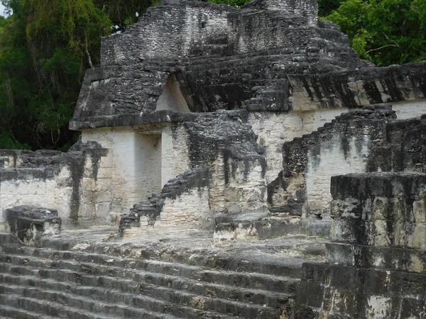 24 2015-11 Guatemala Tikal 051