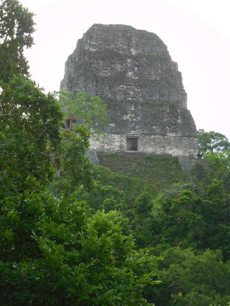 28 2015-11 Guatemala Tikal 057