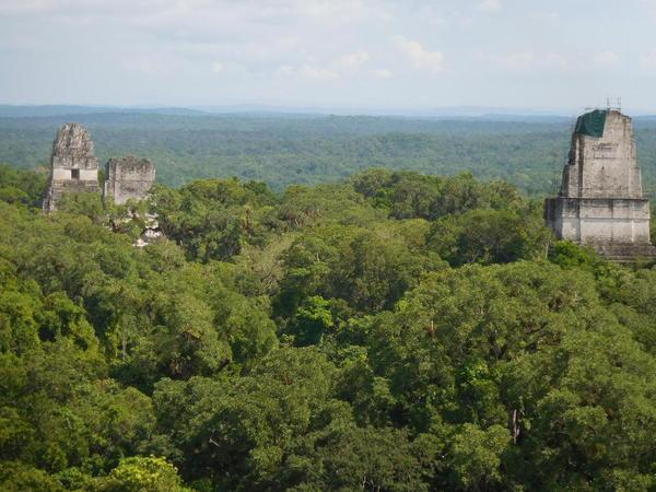29 2015-11 Guatemala Tikal 151