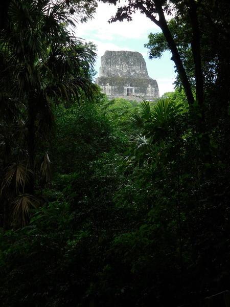 29a 272015-11 Guatemala Tikal 144