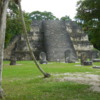 31 2015-11 Guatemala Tikal 022: Observation pyramid