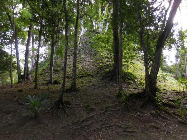 33 2015-11 Guatemala Tikal 030