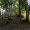 33 2015-11 Guatemala Tikal 030: An unexcavated mound (hidden temple)