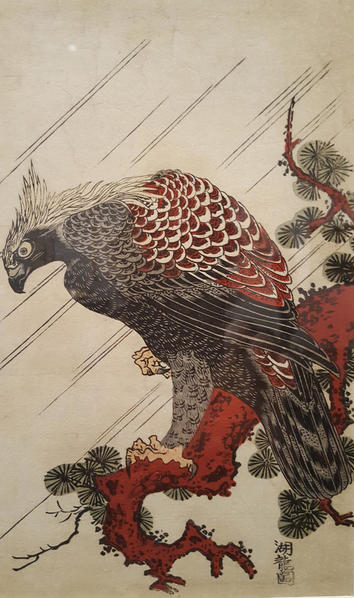 20151202_Asian Art Museum Falcon East