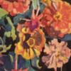 Flowers Western
