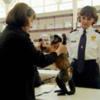 TSA_Service_Monkey